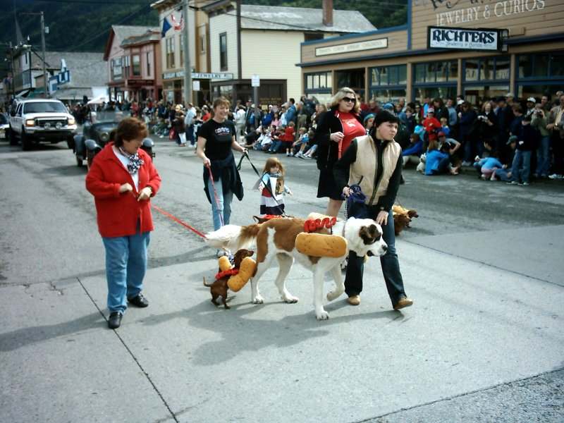 Skagway Independence Day Parade 19 Wiener Dogs